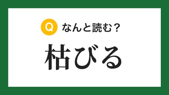 【漢字】「枯びる」の読み方は?